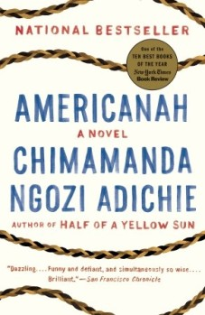 Blog reading AMERICANAH