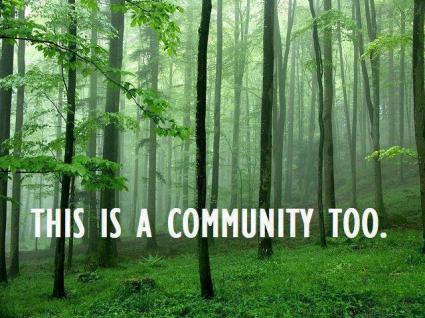 blog halady TreeCommunity