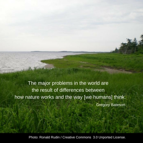 "photo of land bordering water with a fringe of trees on the right. Quote by Gregory Bateson: The major problems of the world are the result of the diference between the way nature works and man thinks."":"