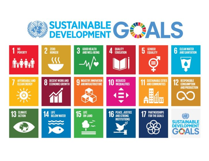 "A colorful chart lists 17 sustainable development goals with the UN symbol (globe with laurel branches framing it) at top, alongside the words, ""Sustainable Development Goals."" A circle with 17 colored segment forms the ""O"" in the word GOALS. The 17 goals are 1 No Povety 2 Zero Hunger 3 Good Health and Wellbeing 4 Quality education 5 Gender Equality 6 Clean Water and Sanitation 7 Affordable and clean energy 8 Decent Work and Economic Growth 9 Indusrty, Innovation and Infrastructure 10 Reduced Inequalities 11 Sustainable cities and communities 12 Responsible consumption and production 13 Climate Action 14 Life Below Water 15 Life on Land 16 Peace, Justie and Strong Institutions 17 Partnerships for the goals"