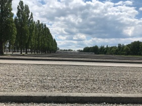 Row of poplar trees on left, with wide graveled sections, divided by concrete curbs.