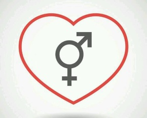 Transgender symbol (the female sex symbol with the male sex symbol added on top right) in inside the outline of a heart.